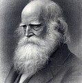 William Cullen Bryant 1794-1878 Was An by Everett