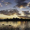 Wimbledon Sunset by Matt Malloy