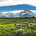 Wind River Range In West Central Wyoming - 02 by Gregory Dyer