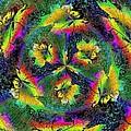 Windblown 3 by Tim Allen