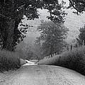 Winding Rural Road by Andrew Soundarajan
