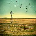 Windmill And Birds by Jill Battaglia