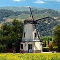 Windmill At Mission Meadows Solvang by Kurt Van Wagner