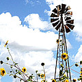 Windmill Dabble 2a by Amber Stubbs