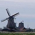 Windmill by Manuela Constantin