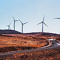 Windmills Near El Chorro by Jenny Rainbow