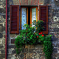 Window Assisi by David Blankenship