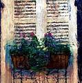 Window Box 2 by Donna Bentley
