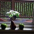 Window Sill 4 by Madeline Ellis