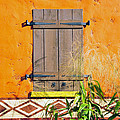 Window To Africa by David Lee Thompson