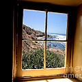 Window View 2 by RJ Aguilar