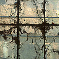Window Vines by Patricia Caldwell