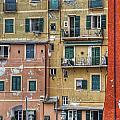 Windows Of Camogli by Joana Kruse