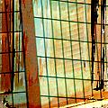Windows Old And New by Lenore Senior