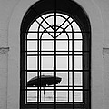 Windows On The Beach In Black And White by Rob Hans
