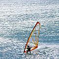 Windsurfer, Baja, Mexico by Skip Brown