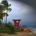 Windy Day In Haleiwa by Mark Gilman