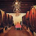 Wine Cellar by Benjamin Matthijs