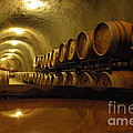 Wine Cellar by Micah May