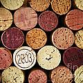 Wine corks by Elena Elisseeva