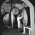 Wine Vaults by Ejor
