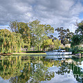 Winery Pond by Diego Re