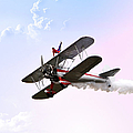 Wing Walker  by Endre Balogh