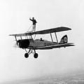 Wing Walker by John Hobbs