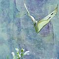 Winging It by Betty LaRue