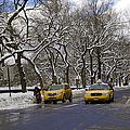 Winter - 2011 by Madeline Ellis