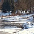 Winter Along The Delaware by Nicole DeVita