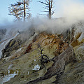 Winter At Yellowstone's Mammoth Terrace by Bruce Gourley