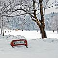 Winter Beach Sign by Aimee L Maher Photography and Art Visit ALMGallerydotcom