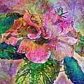 Winter Bloom by Barbara Berney