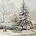 Winter Fairytale by Olena Lopatina