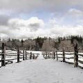 Winter Fields by Rich Bodane