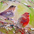 Winter Finches by Sarah Jane Conklin