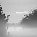 Winter Haze by Odd Jeppesen