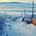 Winter In Romanian Countryside by Gabriela Insuratelu