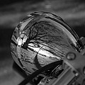 Winter In The Headlight by Patrick  Flynn