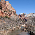 Winter In Zion by Bob and Nancy Kendrick