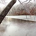 Winter Lake by Cynthia Templin