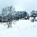 Winter Landscape 1 by Dan Stone