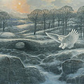 Winter Landscape With Owl by Marte Thompson