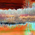 Winter Marsh by Marcia Lee Jones