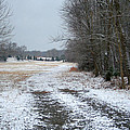 Winter Pasture by Cyndi Brewer