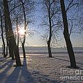 winter Peterburg Russia  by Yury Bashkin