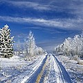 Winter Rural Road by Darwin Wiggett