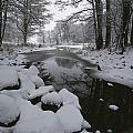 Winter Scene Of Creek With Snow-covered by Mattias Klum