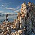 Winter Shoreline Mono Lake by Dean Pennala
